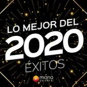 Lo Mejor Del 2020 von Various Artists