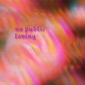 No Public Loving by The Tranq