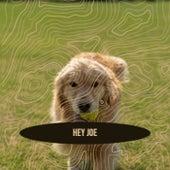 Hey Joe by Various Artists