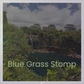 Blue Grass Stomp de Various Artists