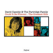 Could It Be Forever...The Greatest Hits by David Cassidy
