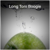 Long Tom Boogie by Various Artists