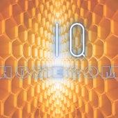HONECOM by IQ