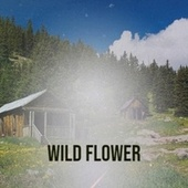 Wild Flower by Various Artists