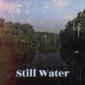 Still Water de Various Artists