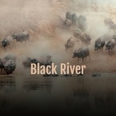 Black River by Various Artists