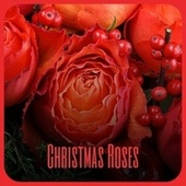 Christmas Roses by Various Artists