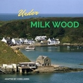 Under Milk Wood de Chris James
