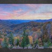 Carolina in the Pines de Various Artists