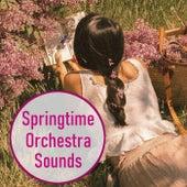 Springtime Orchestra Sounds von Various Artists