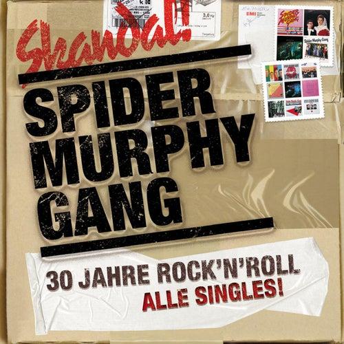 30 Jahre Rock'n'Roll von Spider Murphy Gang