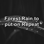 Forest Rain to put on Repeat by Nature Sounds Artists