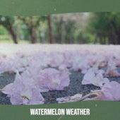 Watermelon Weather von Various Artists