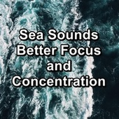 Sea Sounds Better Focus and Concentration by Relaxation And Meditation