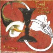 Dulcinea by Toad the Wet Sprocket