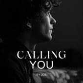 Calling you (Live) von Joe