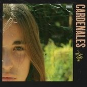 Cardenales by Alka