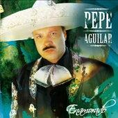 Enamorado by Pepe Aguilar