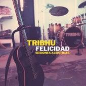 Felicidad (Acoustic Version) de Tribhu