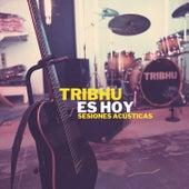 Es Hoy (Acoustic Version) de Tribhu