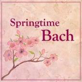 Springtime Bach by Johann Sebastian Bach