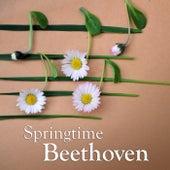 Springtime Beethoven von Ludwig van Beethoven