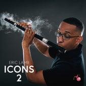 Icons 2 von Eric Lamb