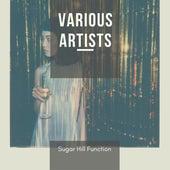Sugar Hill Function de Various Artists