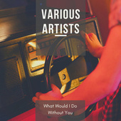 What Would I Do Without You de Various Artists