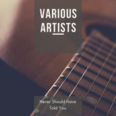 Never Should Have Told You by Various Artists