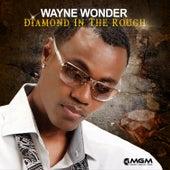 DIAMOND IN THE ROUGH von Wayne Wonder