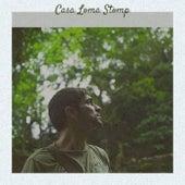 Casa Loma Stomp de Various Artists