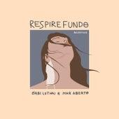 Respire Fundo (Acústico) von Gabi Luthai