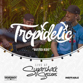Busted Kids (Live at Sugarshack Sessions) by Tropidelic
