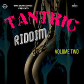 Tantric Riddim, Vol. 2 by Various Artists
