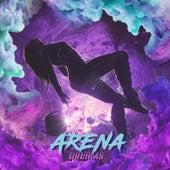 Dreams (Instrumental) by Arena