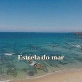 Estrela do mar by Various Artists