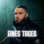 EINES TAGES von Fler