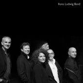 Soundtracks of Life von Ilona Ludwig Band
