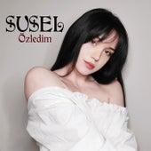 Özledim by Susel