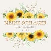 Meine Schlager: Die Hits des Jahres 2021 by Various Artists