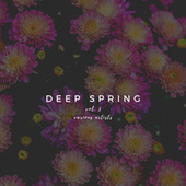 Deep Spring, Vol. 3 by Various Artists
