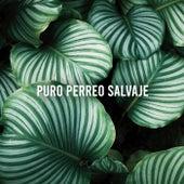 Puro Perreo Salvaje by Various Artists