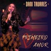 Primeiro Amor de Dani Tavares