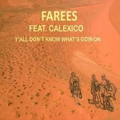Y'all Don't Know What's Goin On by Farees
