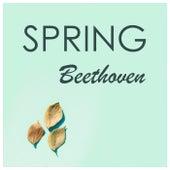 Beethoven - Spring by Ludwig van Beethoven