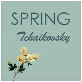 Tchaikovsky - Spring by Pyotr Ilyich Tchaikovsky