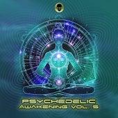 Psychedelic Awakening, Vol. 5 de Various Artists