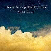 Deep Sleep Collective de The Deep Sleep Collective
