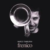 Frenico (feat. Marcello Tonolo, Cameron Brown & Billy Hart) de Marco Tamburini